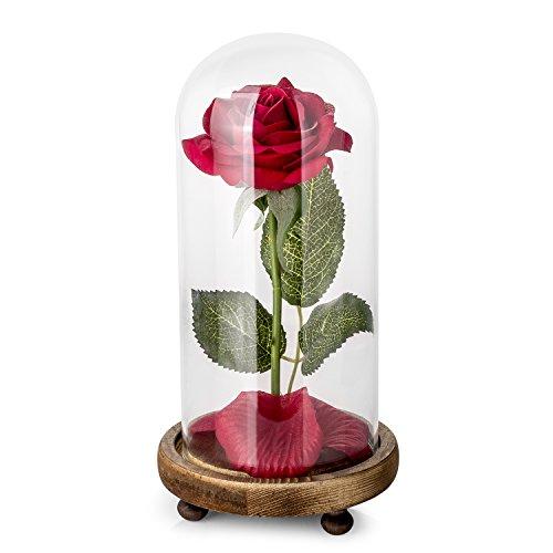 Kit de Rosas La Bella y la Bestia, Rosa de Seda roja y luz...