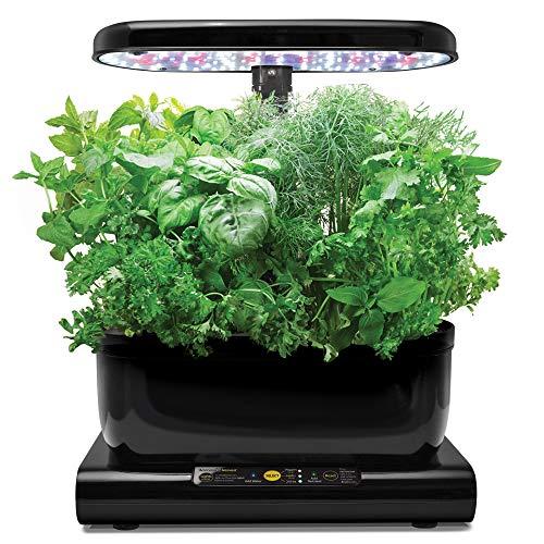 AeroGarden Harvest - Kit de cultivo interior smart garden, 6...